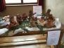 Betlém na výstavě v Nelahozevsi